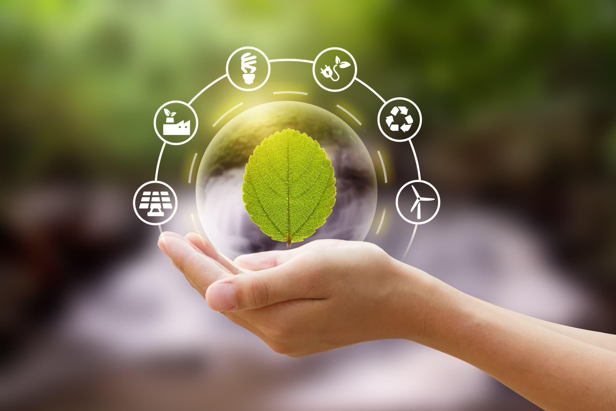Entenda mais sobre a compensação de carbono e como fazer